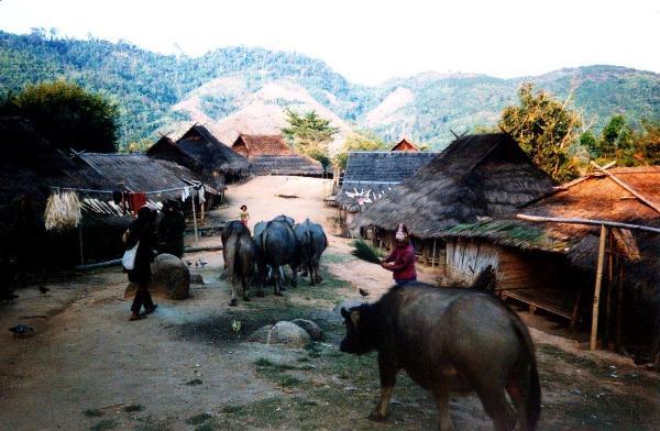 Planinsko-selo-na-severu-Tajlanda-A-mountainous-village-in-the-North-of-Thailand